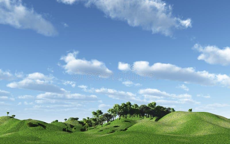 зеленые холмы стоковое фото
