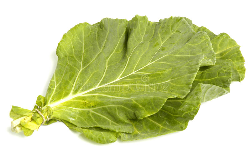 зеленые цвета collard стоковое фото