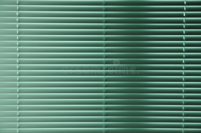 зеленые windowblinds стоковые изображения