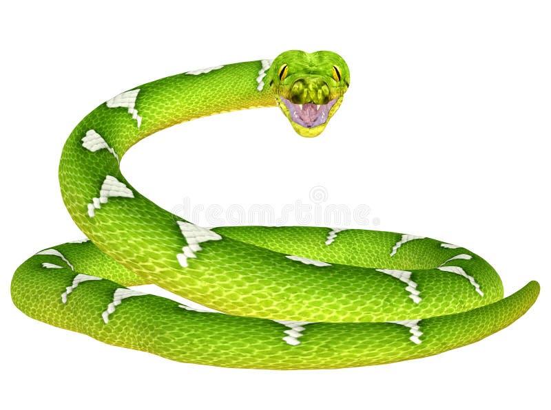 зеленый вал питона иллюстрация штока