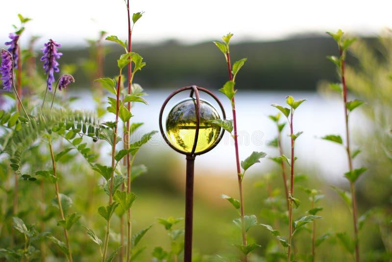 Зеленый взгляд стеклянного шарика стоковые фотографии rf