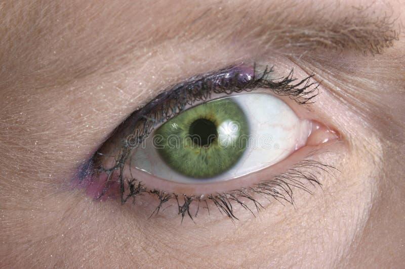 Зеленый глаз смотря вас стоковые фотографии rf