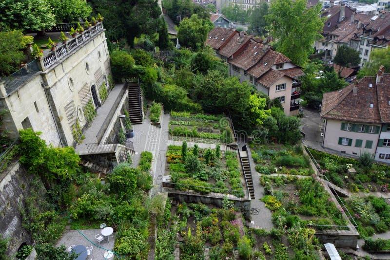 зеленый городок стоковое изображение rf