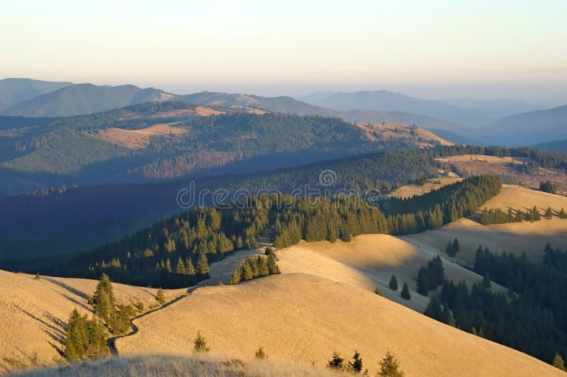 зеленый желтый цвет гор стоковое фото