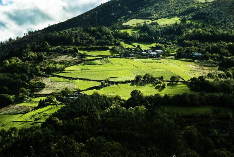 Зеленый и солнечный горный склон стоковая фотография rf