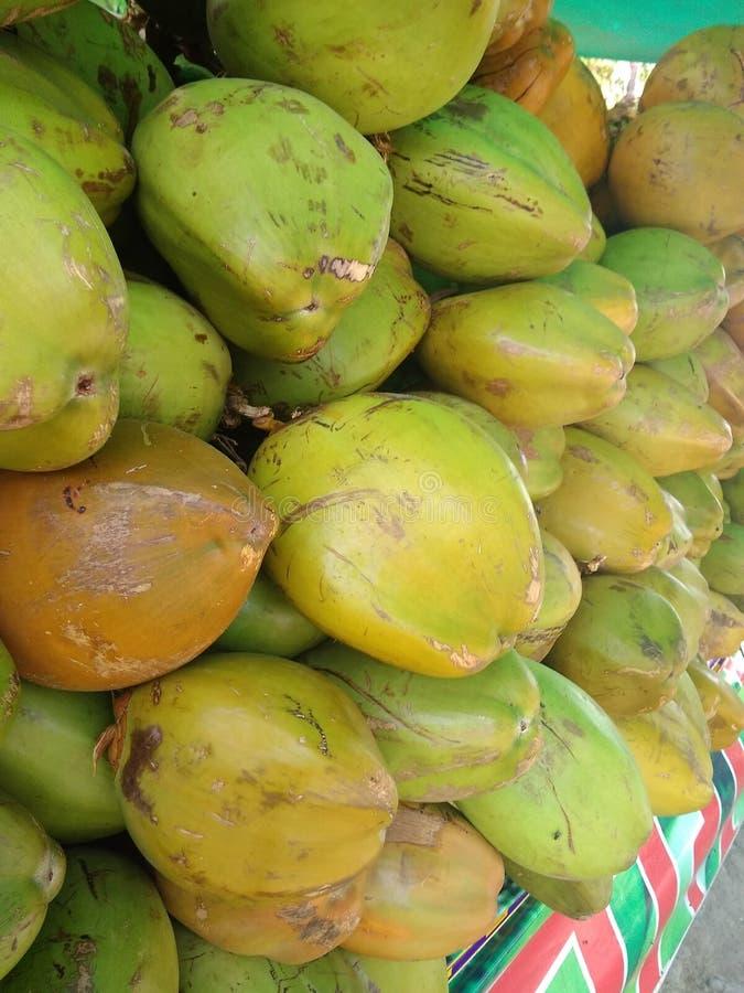 Зеленый кокос воды летом стоковое изображение rf