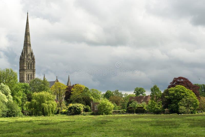 Зеленый ландшафт с собором Солсбери на заднем плане стоковая фотография rf