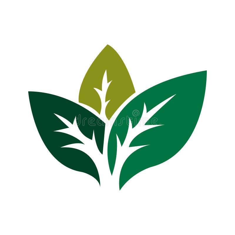 зеленый логос вектор экрана иллюстрации 10 eps стоковые фотографии rf