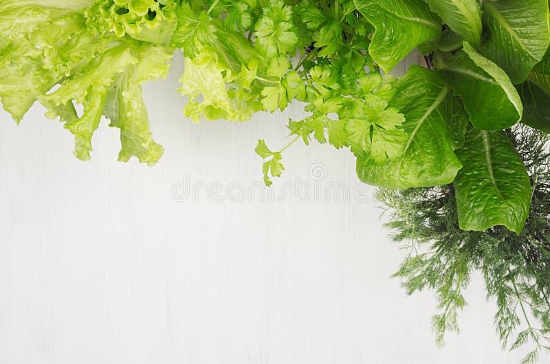 Зеленый молодой салат выходит как рамка на белую деревянную доску, взгляд сверху стоковые изображения rf