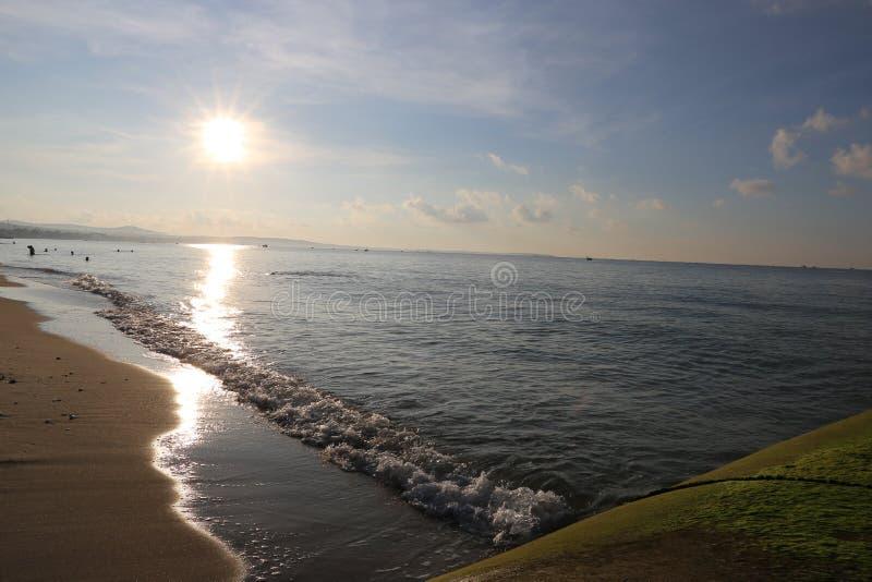 Зеленый мох на прибрежном скалистом пляже под красивым восходом солнца стоковые изображения rf