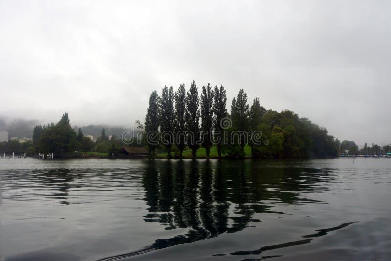 Зеленый остров в середине озера стоковое фото rf