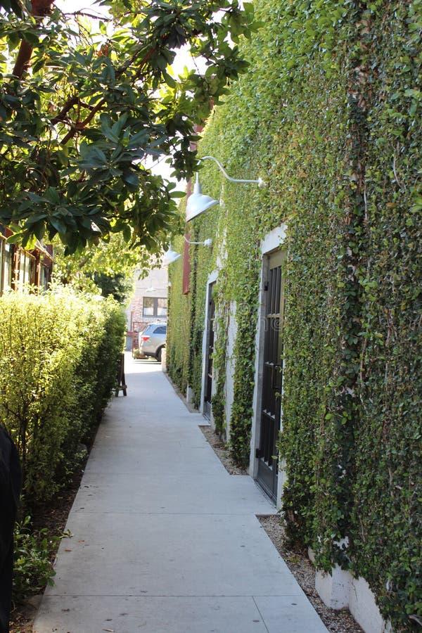 Зеленый переулок Санта-Барбара стоковое фото rf
