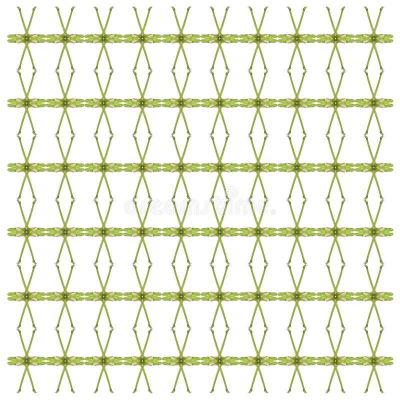Зеленый питон дерева, viridis Morelia, в повторенной картине иллюстрация вектора