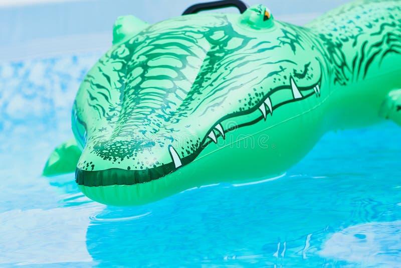 Зеленый пластичный крокодил игрушки в воде стоковые фотографии rf