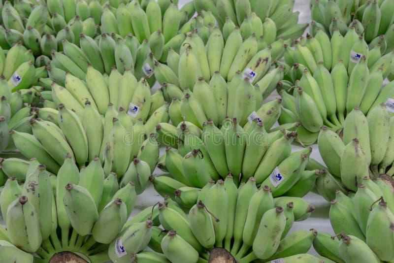 Зеленый сырцовый банан с ванной ценника тайской аранжировал дисплей в концепции свежих продуктов рынка стоковая фотография rf