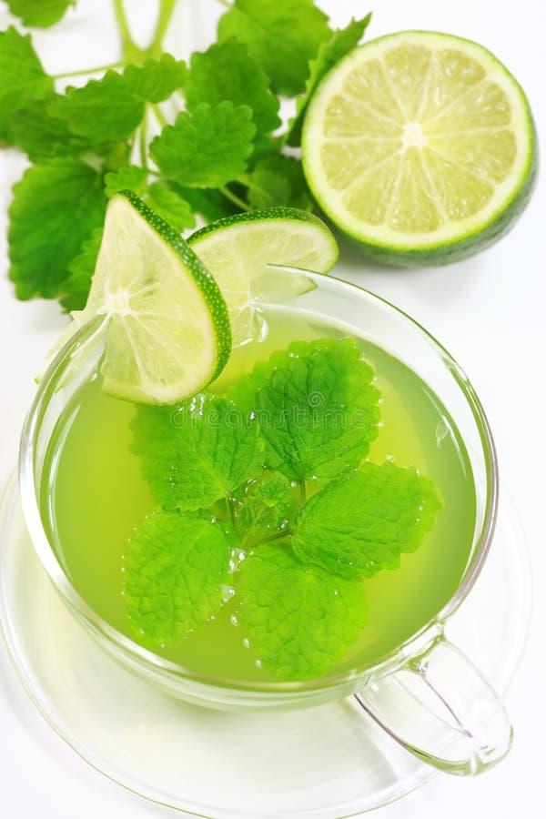 зеленый травяной чай стоковые изображения rf