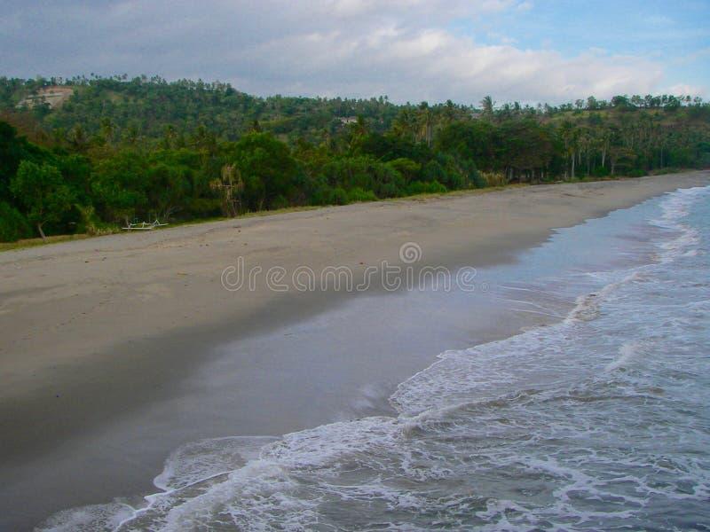 Зеленый тропический лес и пляж во время захода солнца стоковое изображение rf
