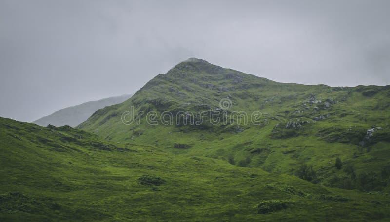Зеленый холм в северо-западе Шотландии стоковые фото