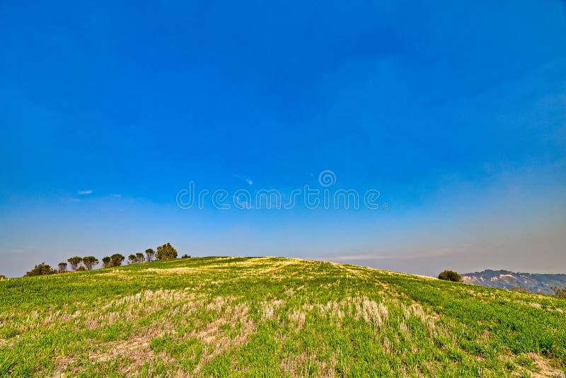зеленый холм стоковые изображения