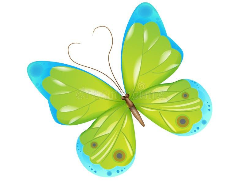 зеленый цвет бабочки иллюстрация вектора