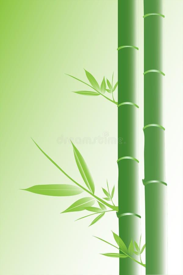 зеленый цвет бамбука иллюстрация вектора
