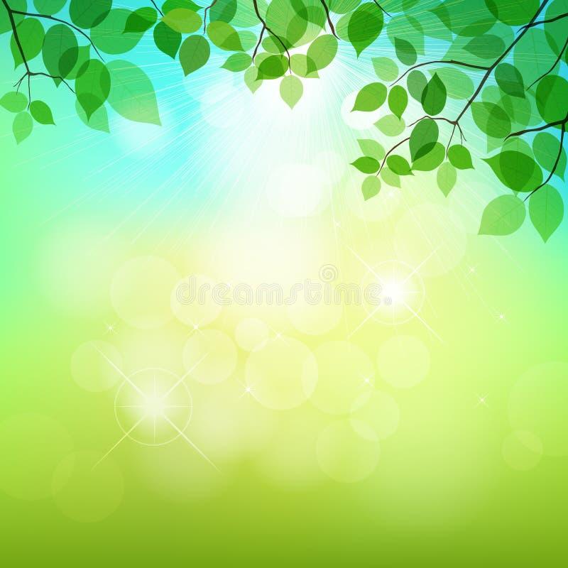 Зеленый цвет выходит естественная предпосылка иллюстрация штока