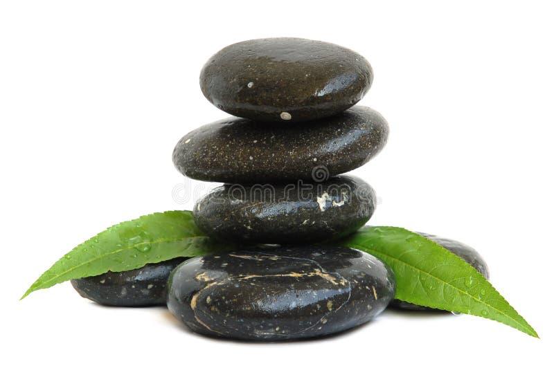 зеленый цвет выходит камни спы стоковое изображение