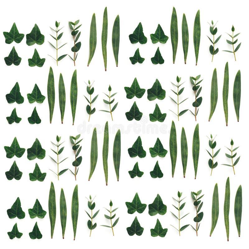 зеленый цвет выходит картина безшовной стоковая фотография rf