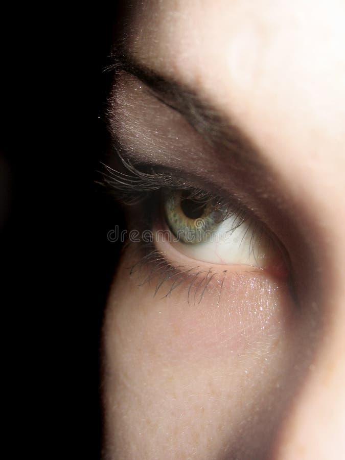 зеленый цвет глаза стоковые фото