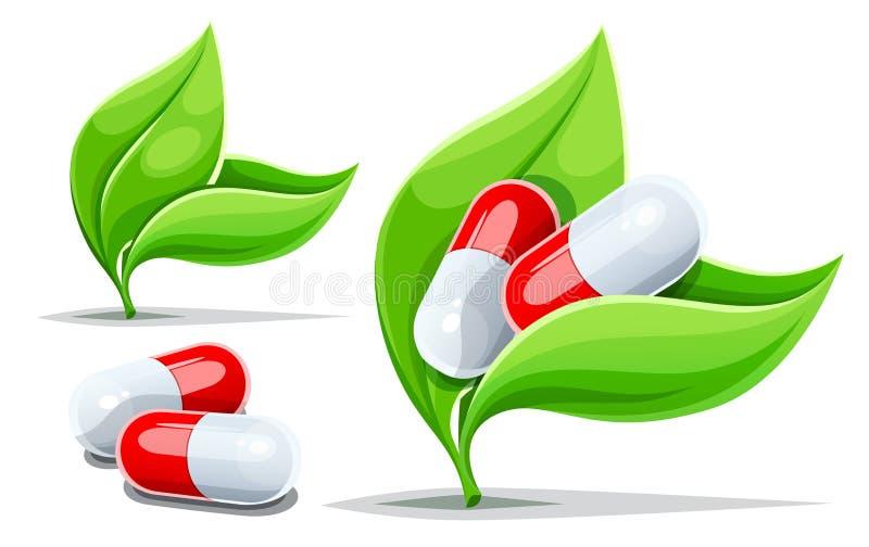 Зеленый цвет концепции нетрадиционной медицины Ayurvedic выходит травяные таблетки r иллюстрация вектора
