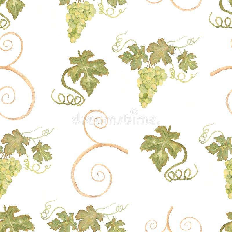 Зеленый цвет красивой руки акварели вычерченный безшовный и желтая картина с ветвями и листьями виноградин r иллюстрация штока