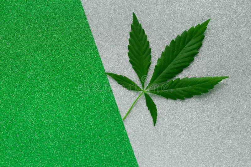 Зеленый цвет лист марихуаны и серебряная предпосылка стоковые фотографии rf