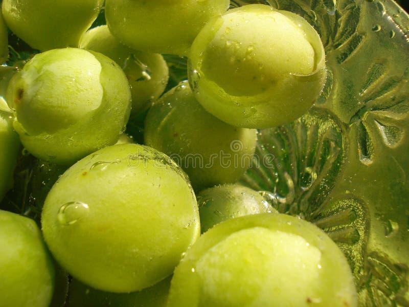 зеленый цвет плодоовощей стоковые изображения rf