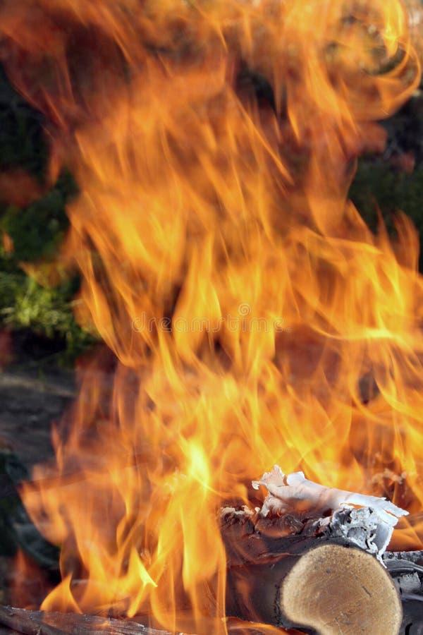 Download зеленый цвет пожара стоковое изображение. изображение насчитывающей накалять - 18381911