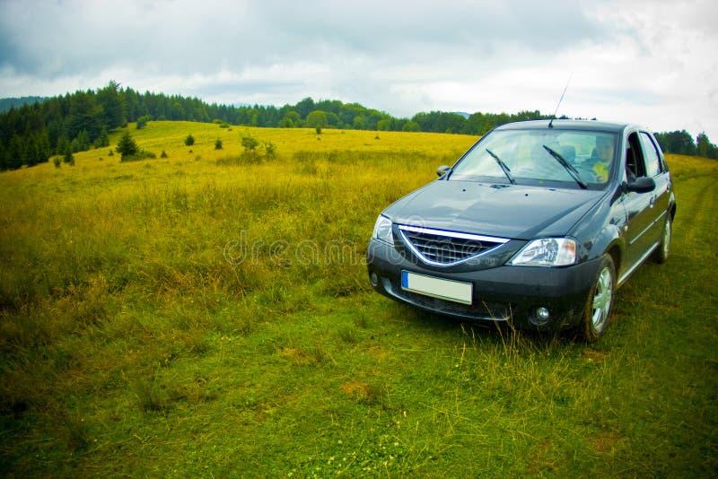 зеленый цвет поля автомобиля стоковые фото
