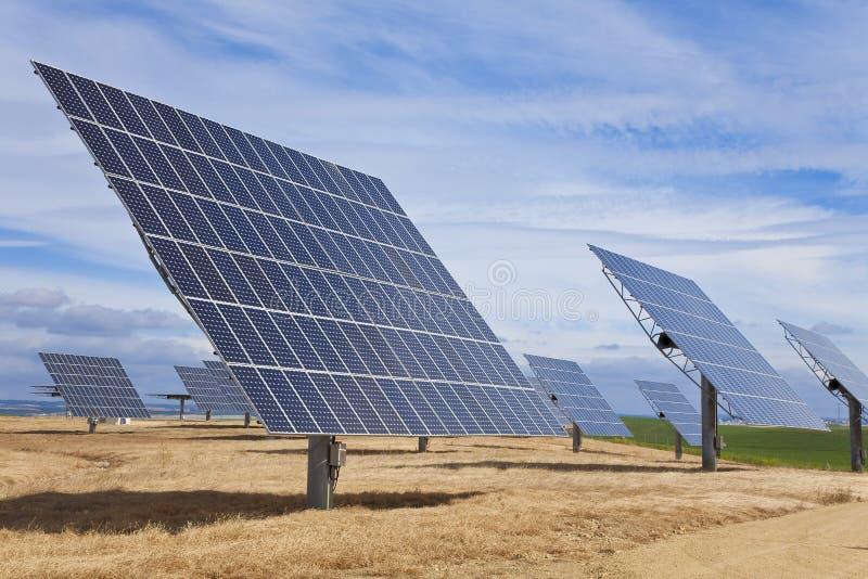 зеленый цвет поля энергии обшивает панелями фотовольтайческое солнечное стоковые фото