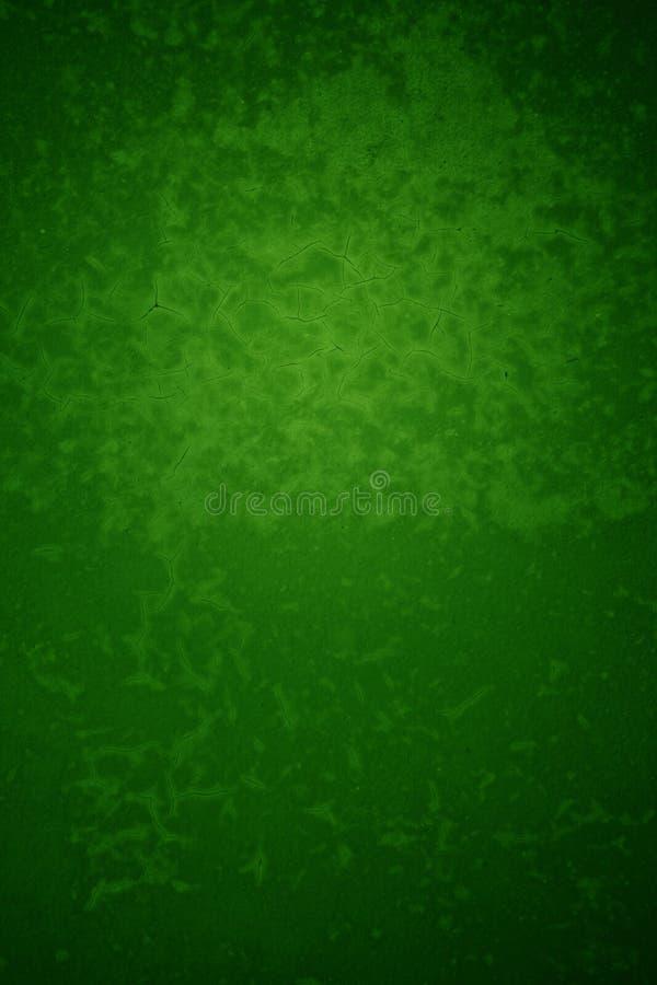 зеленый цвет предпосылки текстурировал стоковое фото