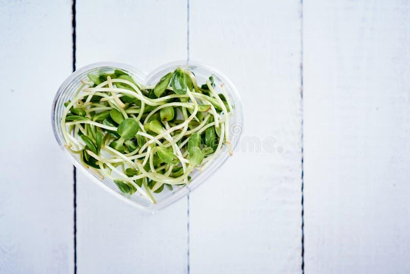 Зеленый цвет пускает ростии солнцецвет в шаре сформированном сердцем на белом деревянном столе стоковая фотография