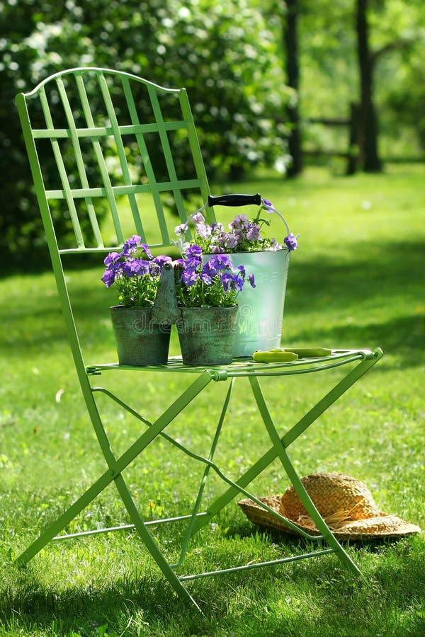 зеленый цвет сада стула стоковые изображения rf
