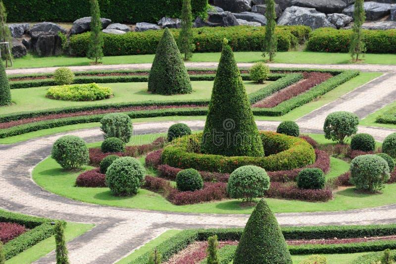 зеленый цвет сада стоковые изображения rf