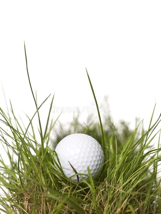 зеленый цвет травы гольфа шарика стоковое фото rf