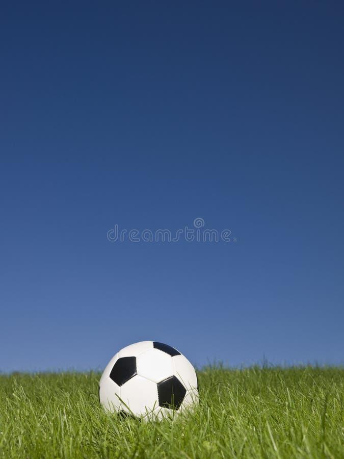 зеленый цвет травы футбола стоковые изображения