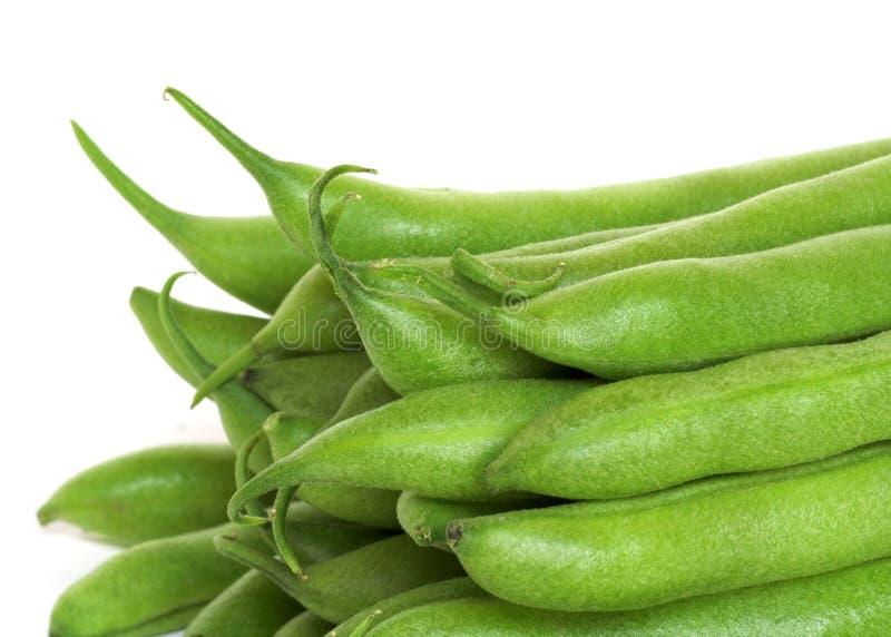 зеленый цвет фасолей свежий стоковая фотография