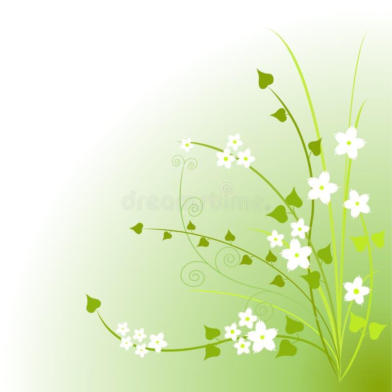 зеленый цвет цветений иллюстрация штока