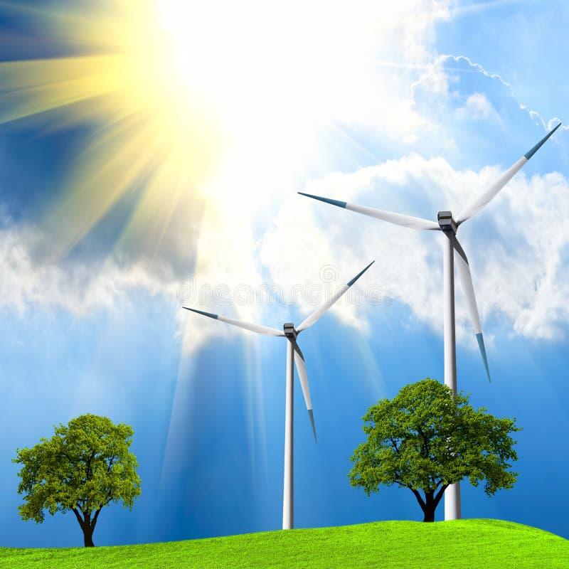 зеленый цвет экологичности стоковая фотография