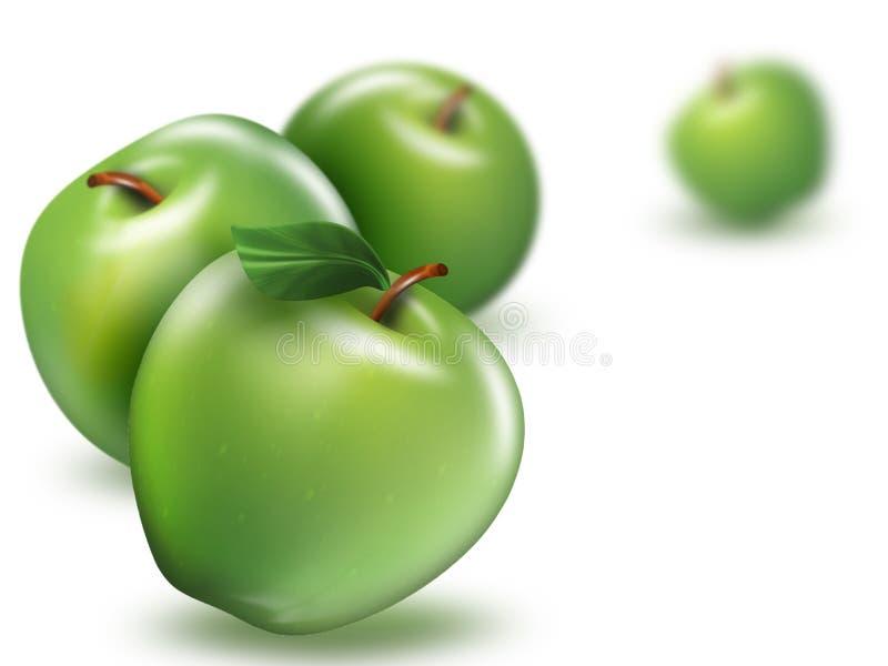зеленый цвет яблок бесплатная иллюстрация