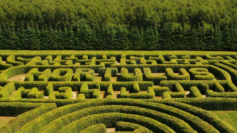 Зеленый цвет bushes лабиринт стоковое изображение rf