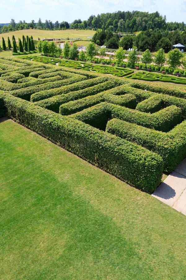 Зеленый цвет bushes лабиринт стоковые изображения