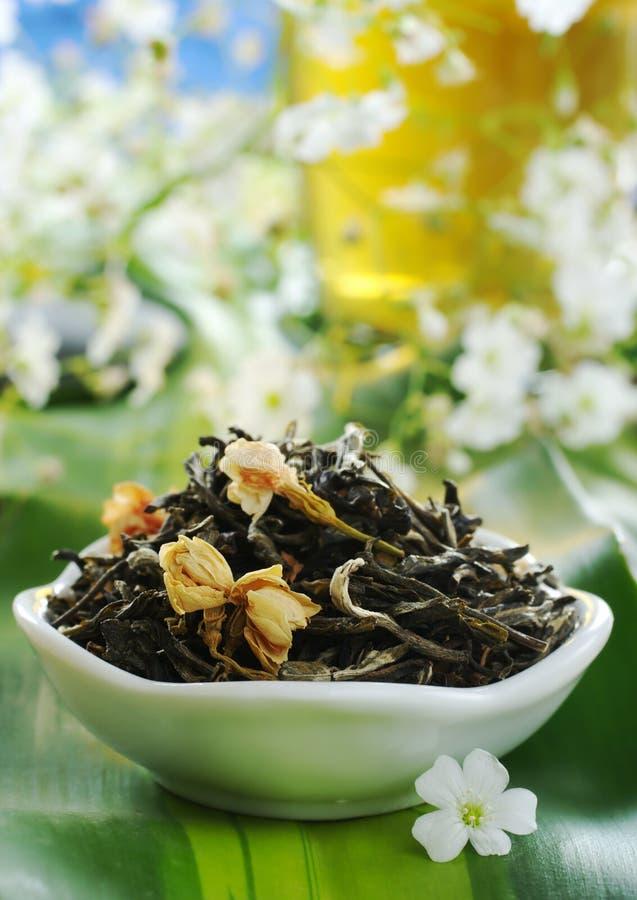 зеленый чай жасмина стоковые фотографии rf