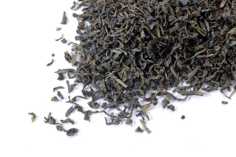 зеленый чай листьев стоковая фотография rf